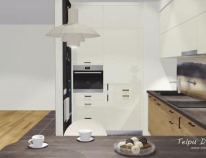 virtuves iekārtas dizains